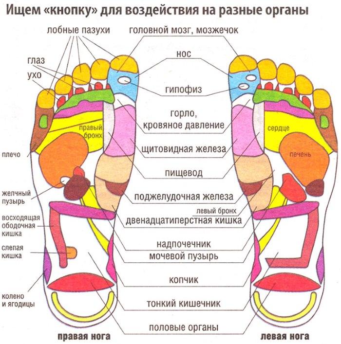 akupunktūros taškų varpos